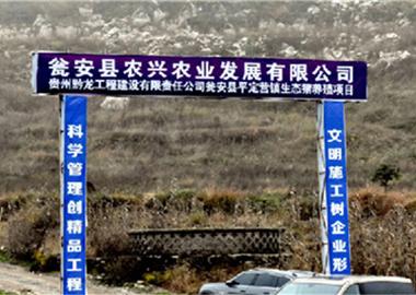 瓮安县平定营镇生态猪养殖项目施工